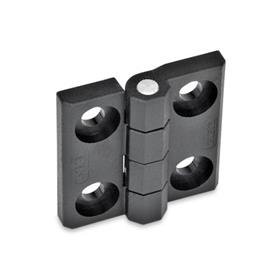 EN 237.1 Plastic Hinges, Countersunk Thru Hole, Socket Head Thru Hole, Threaded Stud, or Combination Types Type: B - 2x2 bores for socket head cap screws