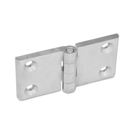 GN 237 Stainless Steel Hinges, with Extended Hinge Wing Finish: GS - Matte shot-blasted finish