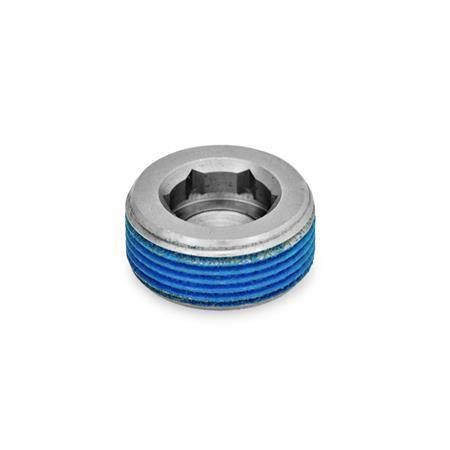 GN 252.5 Tapones roscados de acero inoxidable Tipo: PRB - Con revestimiento en la rosca (revestimiento total de Poliamida)