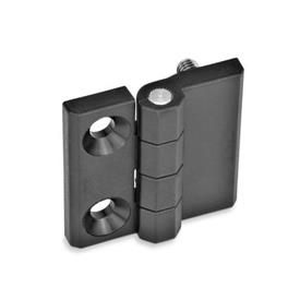 EN 237.1 Plastic Hinges, Countersunk Thru Hole, Socket Head Thru Hole, Threaded Stud, or Combination Types Type: D - 2x bores f. countersunk screws/2x threaded studs