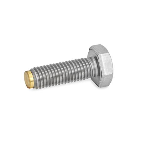 GN 933.5 Stainless Steel Hexagon Head Screws, with Brass / Plastic Tip or Ball End Type: MS - Brass tip