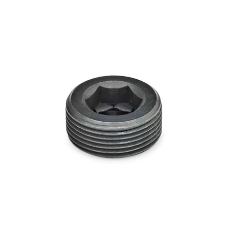 GN 252 Steel Threaded Plugs Type: A - Without thread coating